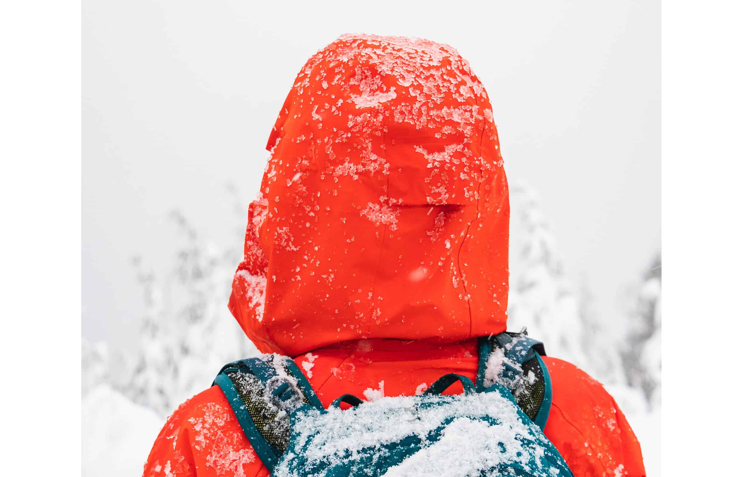 snow falling on a red jacket hood