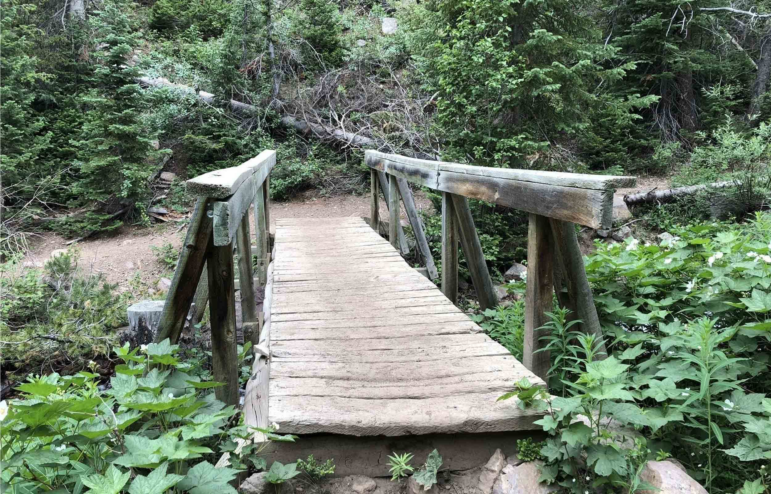 utah hiking bridge on yellow pine trail