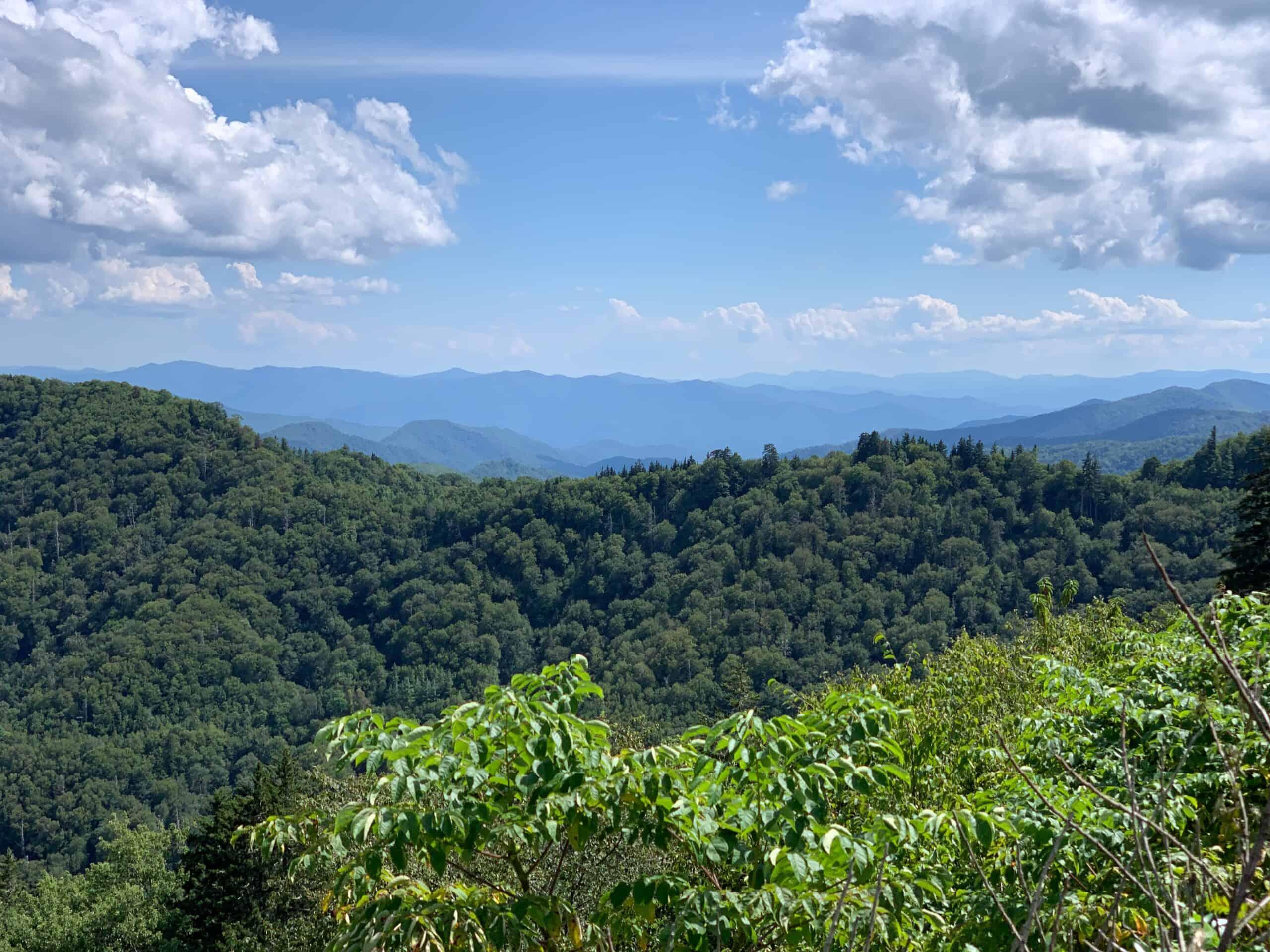 100 mile wilderness Appalachian