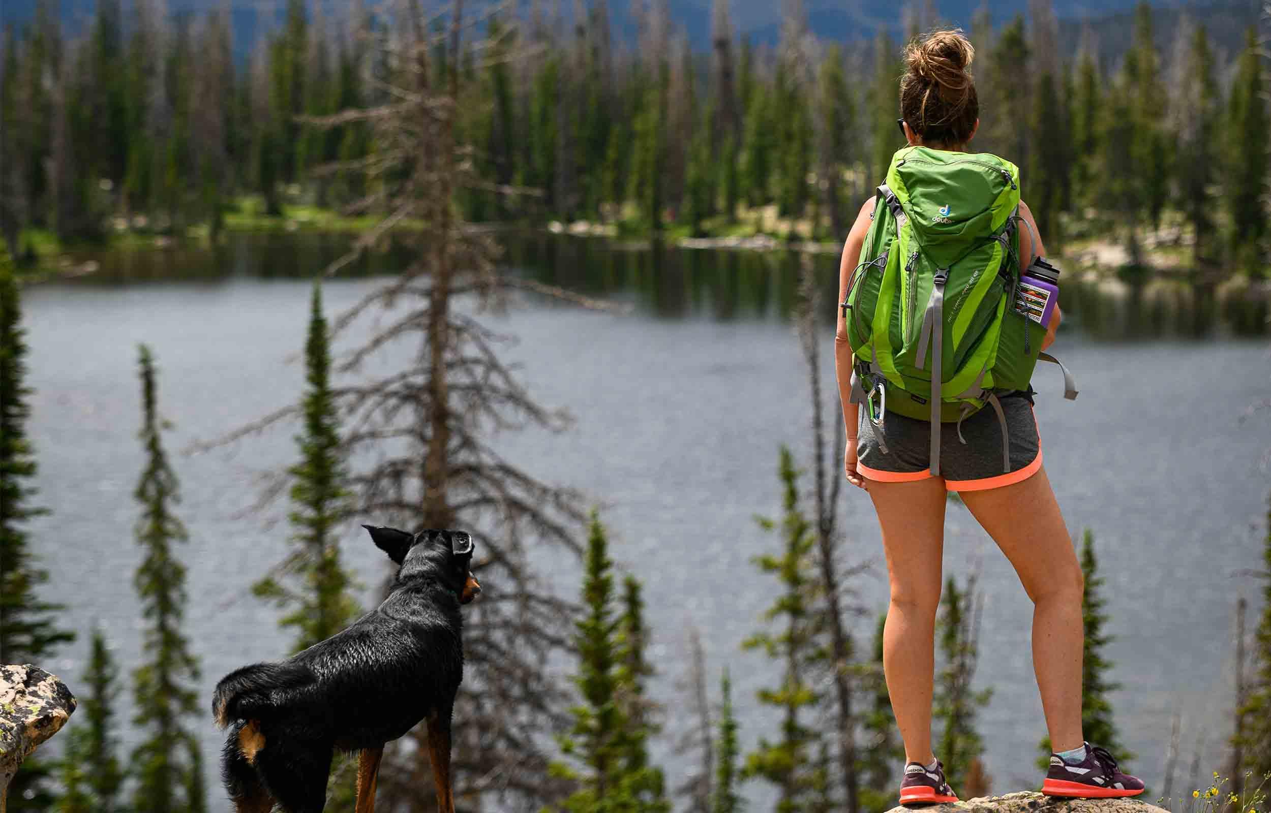 dog and girl hiking