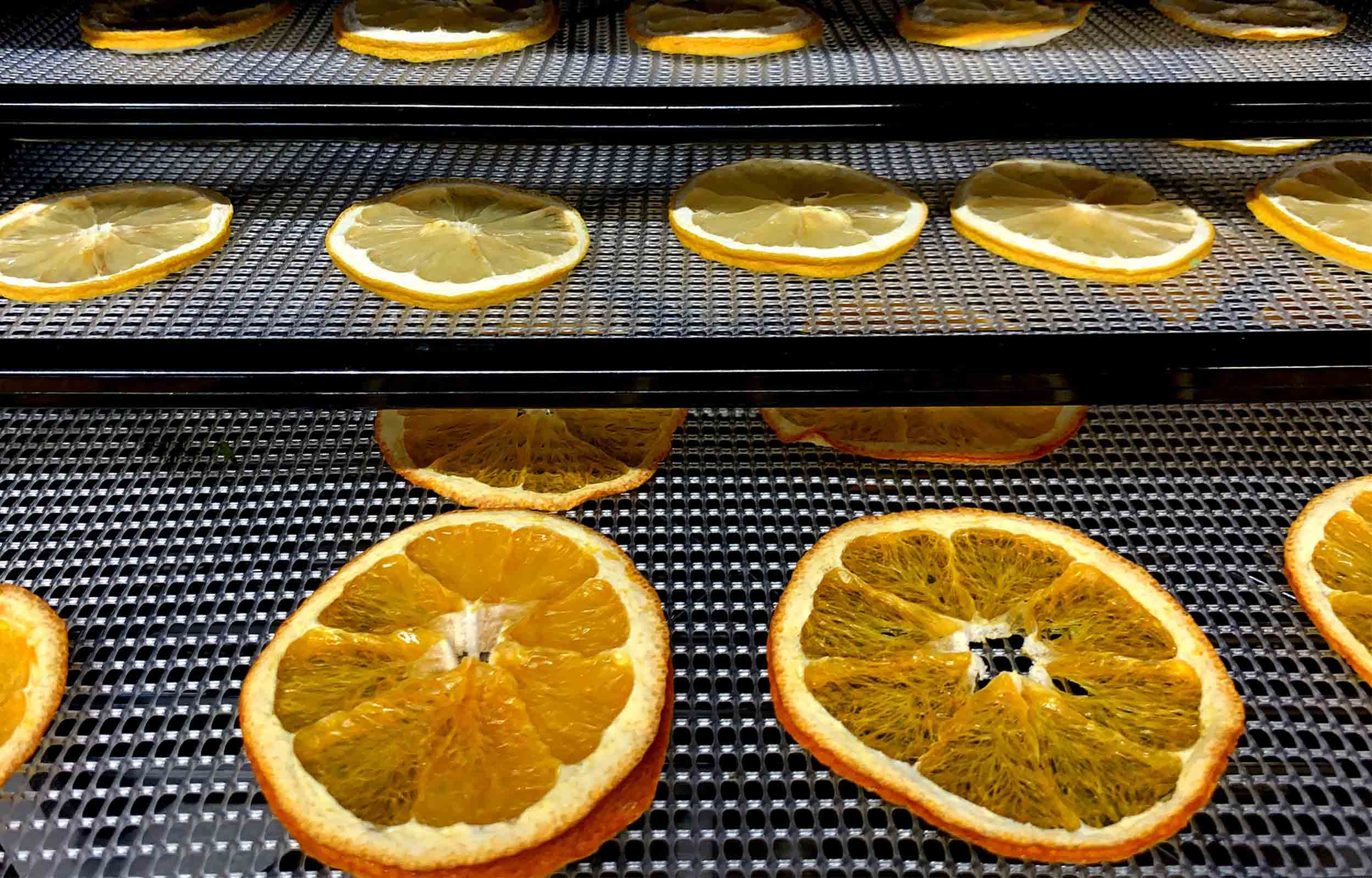 orange slices dehydrating