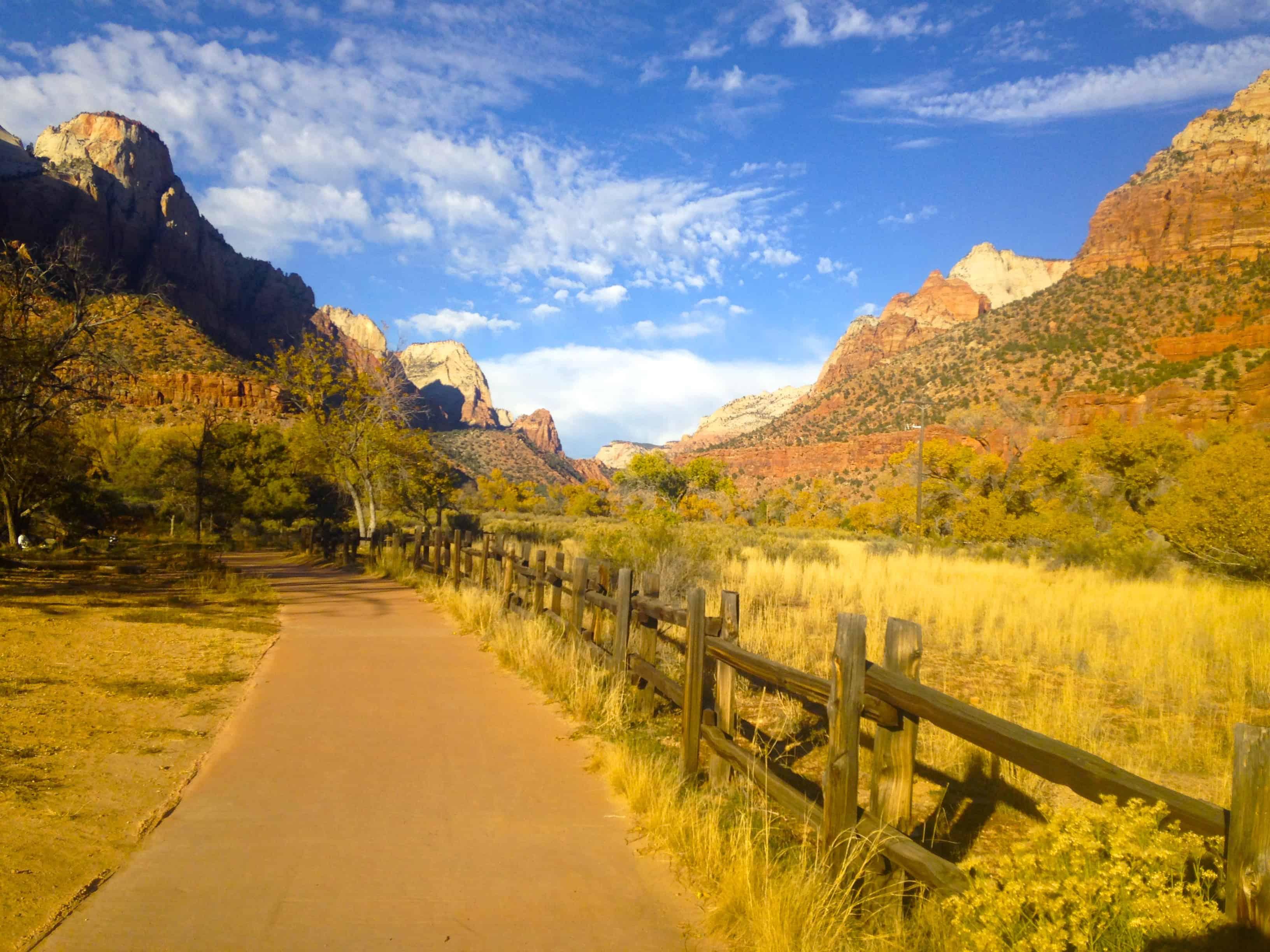 Zion national park parus trail