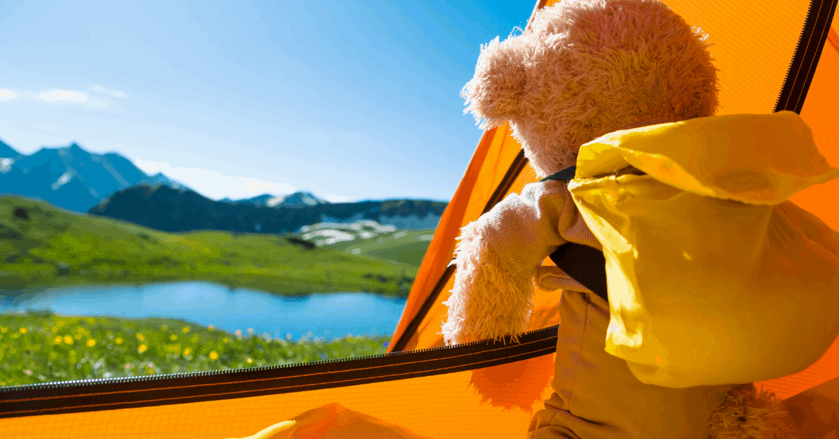 teddy camping kids tent