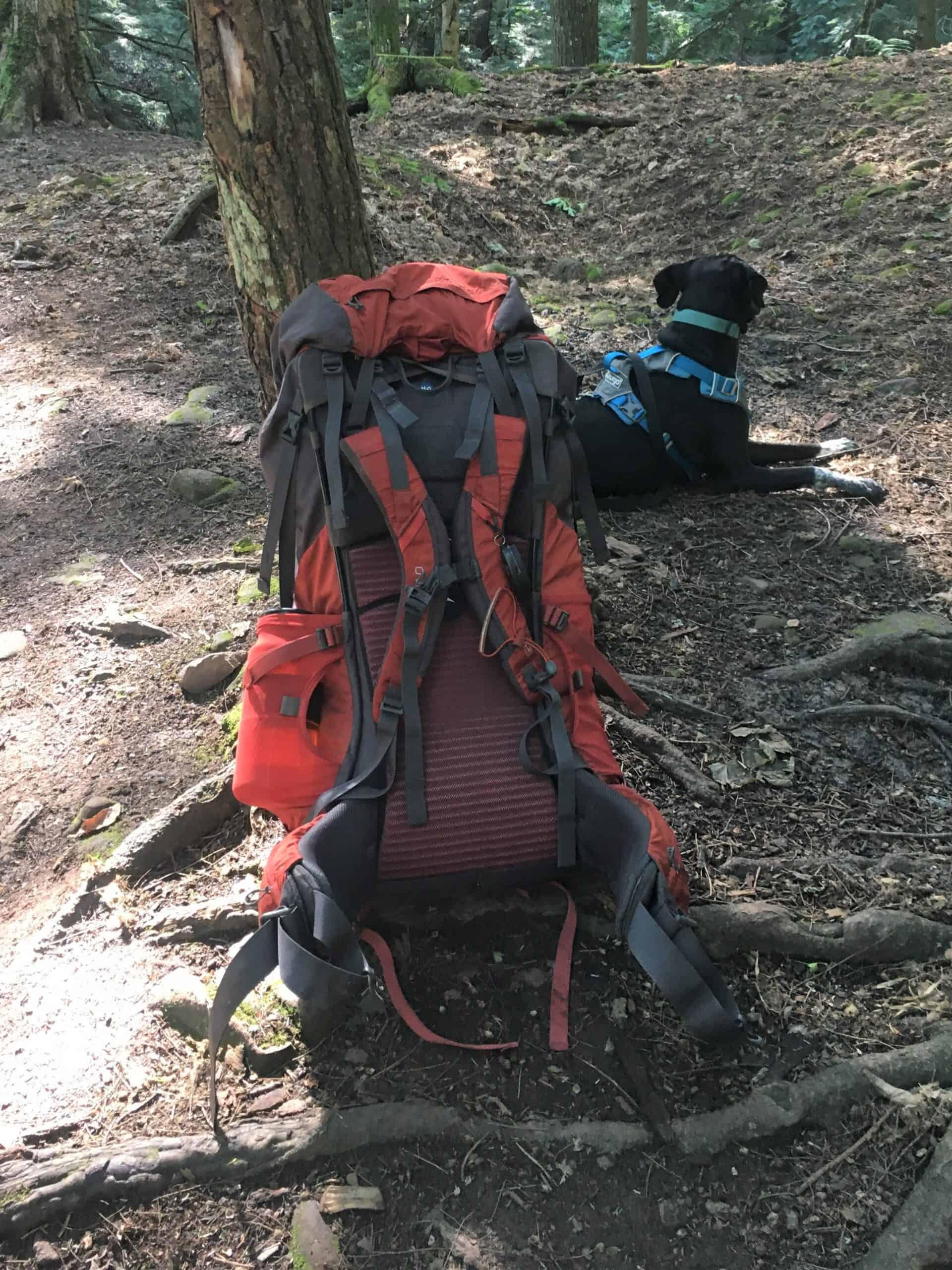 Osprey Volt 75 backpack