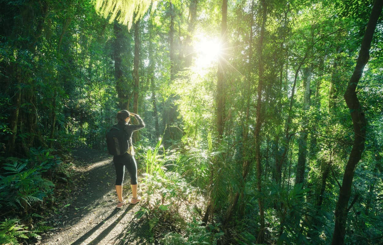 girl woods hiking