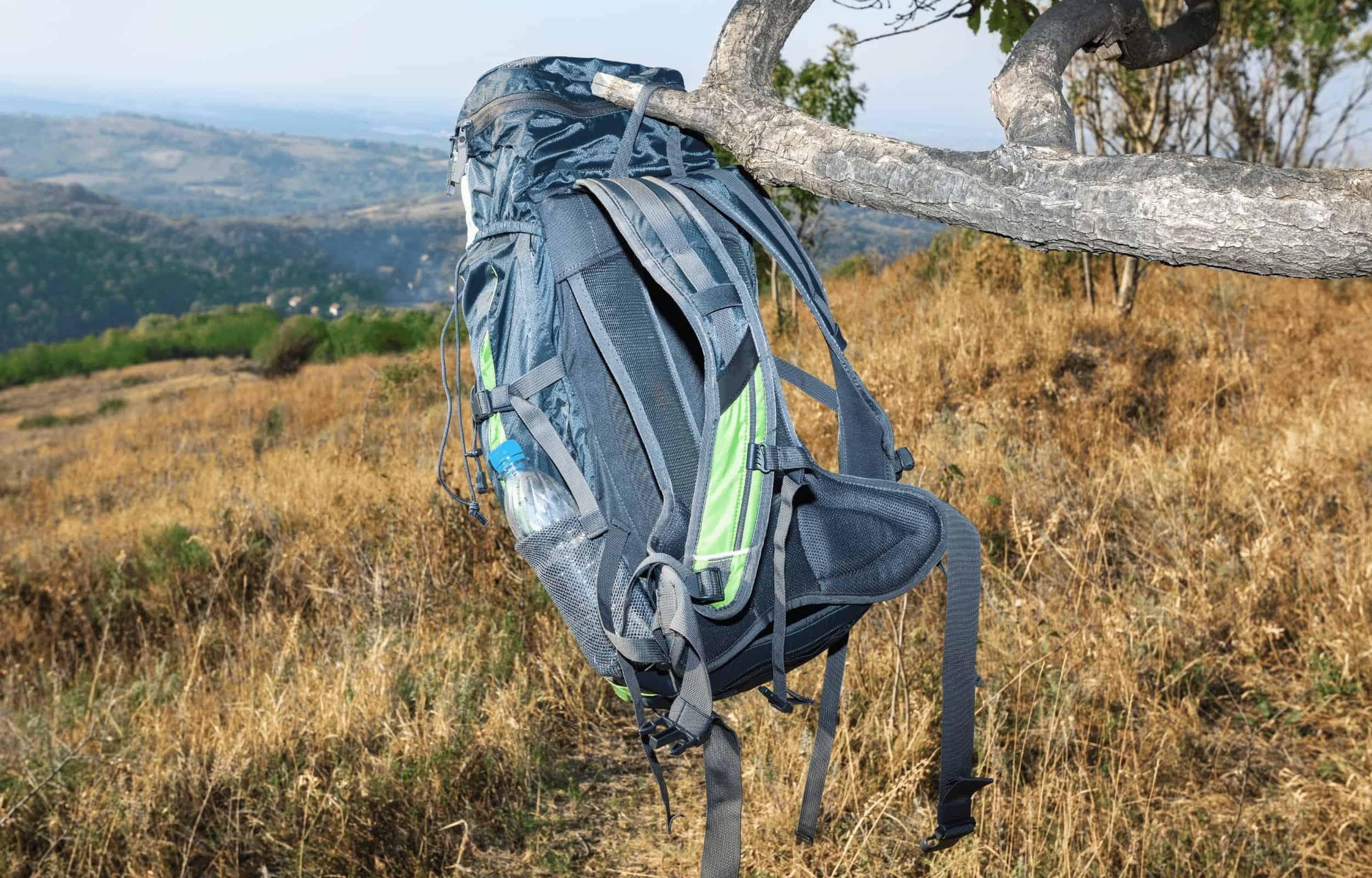 clean backpack tree hanging