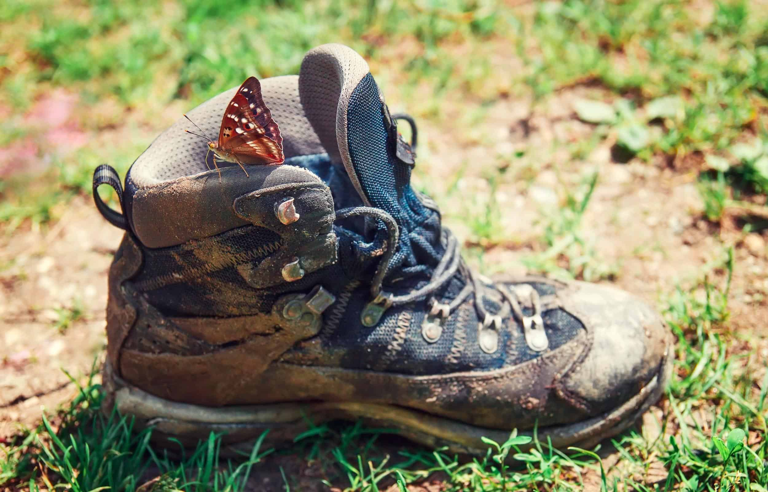 Dirty hiking boot clean butterfly
